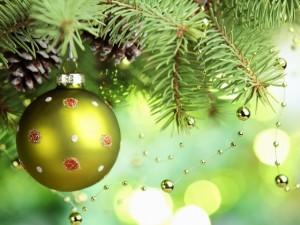 Взгляните на рождественскую елку иначе